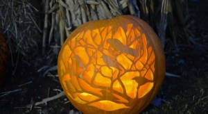 Of the many jack-o'-lanterns on display at the Fearrington Pumpkinfest.